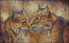 Bonding Bobcats