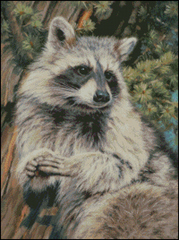 Mischief Raccoon