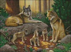 A family of Wolves