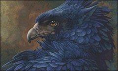 Bluebird - HS