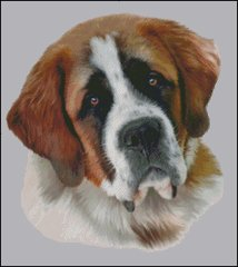 Saint Bernard NB