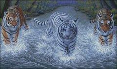 Majestics Wet and Wild