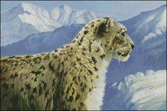 Glacier Cat