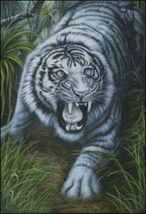 White Tiger - JN
