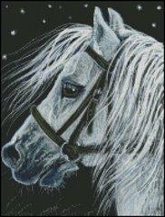 Starlight Horse