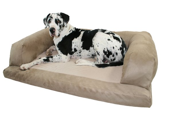 grand couch dog bed | xxl dog beds