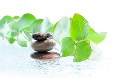 Eucalyptus essential oil 1/2 oz