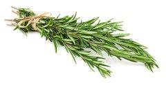Rosemary essential oil 1/2 oz