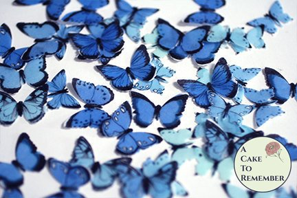 48 small blue edible cake decorating butterflies