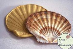 Large flat shell silicone mold for fondant, cake decorating mold, seashell mold. M5060