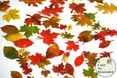 "64 small edible autumn leaves for cakes, .5"" to 1.5"" wide. Color on both sides"
