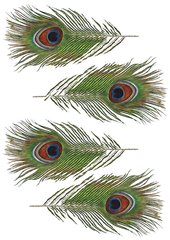 One sheet of four wafer paper peacock feathers to cut out and use for cake decorating or cupcake decorating.