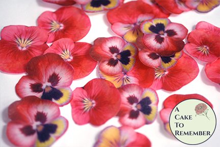 "24 red wafer paper edible pansies, 1.5"" - 2"" wafer paper flower cupcake toppers. Good for vegan cakes and cookies"