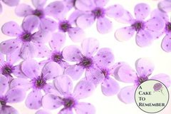 Wafer paper flowers for cake decorating edible flowers for cakes 48 wafer paper purple cherry blossoms for cupcake toppers mightylinksfo Gallery