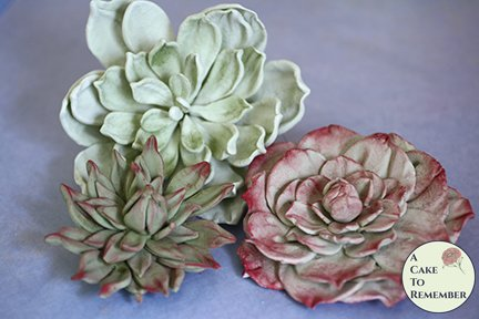 3 large wired gumpaste succulents for wedding cake toppers, cake decorating, or DIY wedding cakes