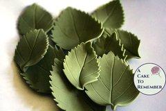 12 gumpaste hydrangea leaves for cake decorating