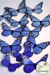 Edible butterflies, 12 blue edible wafer paper monarch butterflies for cake decorating, cupcake decorating