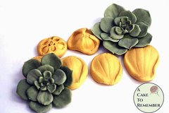 Succulent mold/veiner for cake decorating and gumpaste succulents