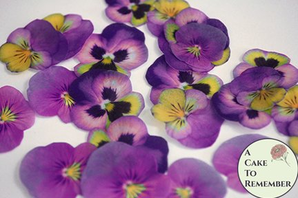 24 purple and yellow wafer paper edible pansies