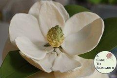 Gumpaste Magnolia for Cake Decorating or wedding cake toppers