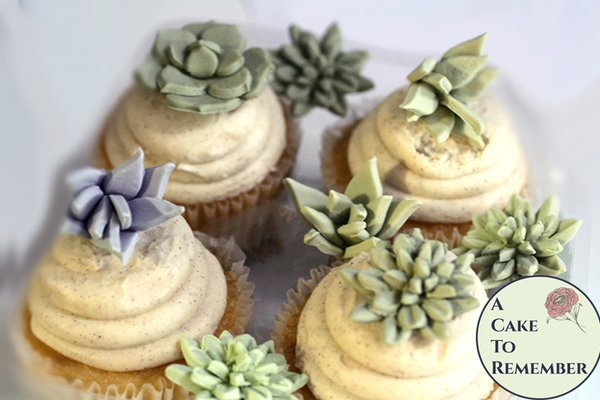 12 small edible succulents assortment variety for desert wedding cake topper.