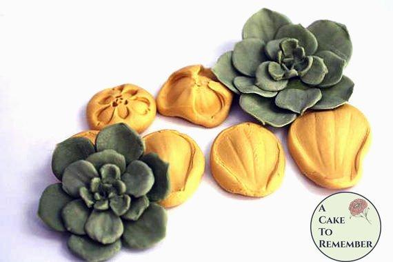 Succulent mold/veiner for cake decorating and gumpaste succulents
