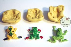 Large frogs mold set for cake decorating, cupcakes or polymer clay M1093