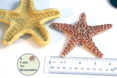 """Extra-large 4 1/2"""" starfish Mold for cake decorating, chocolate mold, polymer clay mold, resin mold, soap, silicone mould, starfish mould"""