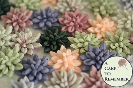 12 small gumpaste succulents for rustic wedding cupcake toppers