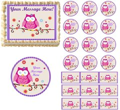 Owl Blossom First Birthday Baby Shower Edible Cake Topper Image Frosting Sheet
