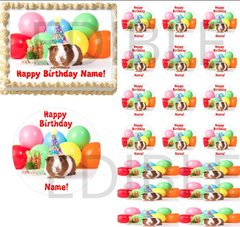 Party Hat Guinea Pig EDIBLE Cake Topper Image Guinea Pig Cupcakes Cute Guinea