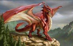 Dragons Vision