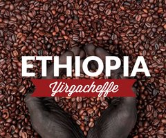 Organic Coffee, Ethiopia