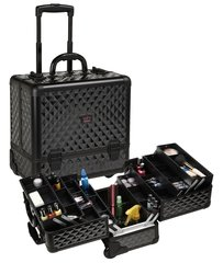 Cosmetic Cases on wheels-8 trays