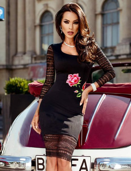 Magnificent Long Sleeve Lace Elegant Embroidery Fashion Dress