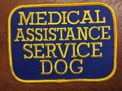 Medical Assistance Service Dog