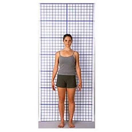 Wall Posture Chart Performance Chiropractic Amp Wellness