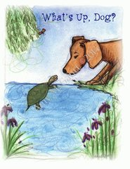 Dog and Turtle Friendship Greeting Cards