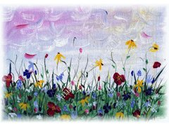Wildflowers Sympathy Greeting Card