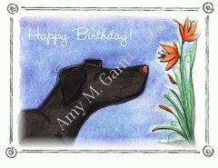 Lily Birthday Greeting Card