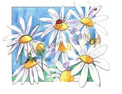 Daisy Garden Boxed Note Cards
