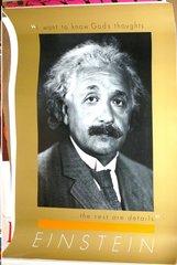 Albert Einstein vintage poster