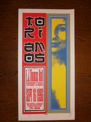 Tori Amos poster by Kelley
