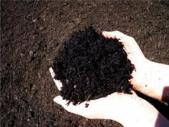 Grandscape® Black Triple Processed Bark Mulch