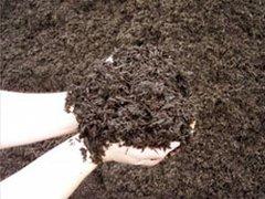 Grandscape® Brown Triple Bark Mulch