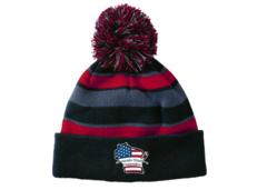 Wisconsin Wrestling Federation Striped Stocking Cap
