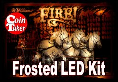 3. FIRE LED Kit w Frosted LEDs