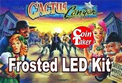 3. CACTUS CANYON LED Kit w Frosted LEDs
