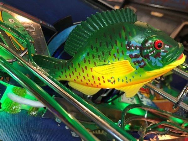 Fishtales Fish