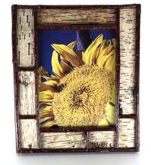 8 x 10 Birch Bark Picture Frame